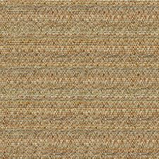Earth Ethnic Decorator Fabric by Kravet