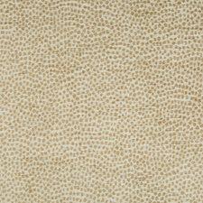 Gold/Ivory Animal Skins Decorator Fabric by Kravet