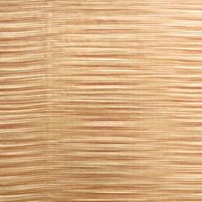 Spice Global Decorator Fabric by Fabricut