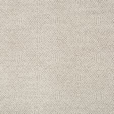 Grey/White Contemporary Decorator Fabric by Kravet