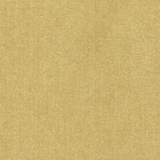 359074 DQ61335 258 Mustard by Robert Allen