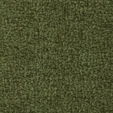 Cactus Solid Decorator Fabric by Kravet