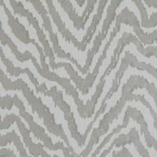 361721 DP61616 248 Silver by Robert Allen