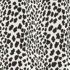 Black/White Animal Skins Decorator Fabric by Duralee