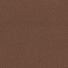 Tudor Decorator Fabric by Schumacher