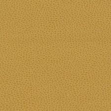 Sunshower Decorator Fabric by Schumacher