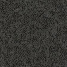 Ebony Decorator Fabric by Schumacher
