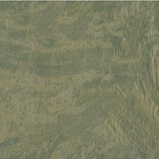 Grey/Green Solids Decorator Fabric by Kravet