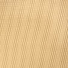 Saffron Texture Plain Decorator Fabric by Fabricut