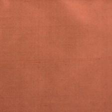 370018 89188 219 Cinnamon by Robert Allen