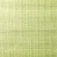375424 DK61566 27 Spruce by Robert Allen