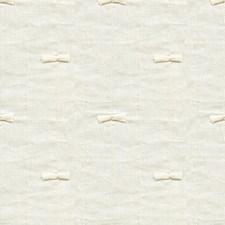 Salt Novelty Decorator Fabric by Kravet