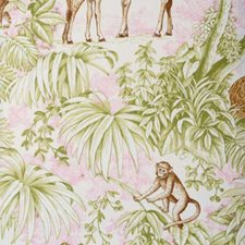 Pink/green Decorator Fabric by Duralee