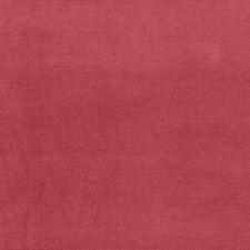 Woodrose Decorator Fabric by Schumacher
