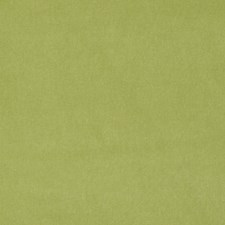 Sage Solid Decorator Fabric by Stroheim