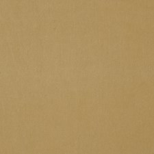 Tussah Solid Decorator Fabric by Stroheim