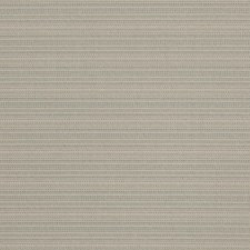 Beetle Solid Decorator Fabric by Stroheim