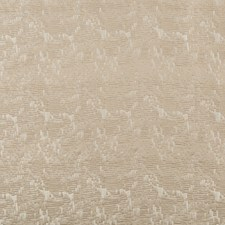 Prosecco Tone On Tone Decorator Fabric by Kravet