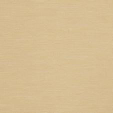 Biscotti Solid Decorator Fabric by Trend