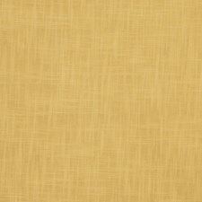 Maize Solid Decorator Fabric by Fabricut