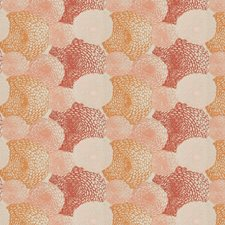 Coral Embroidery Decorator Fabric by S. Harris