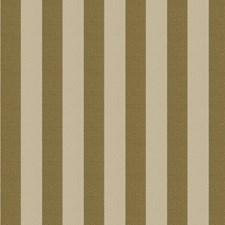 Harvest Gold Stripes Decorator Fabric by Fabricut