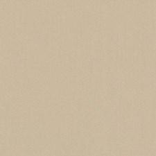 511788 DK61731 152 Wheat by Robert Allen