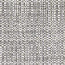 512095 DW16211 562 Platinum by Robert Allen