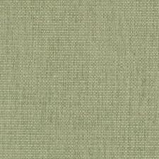 512146 DW16217 2 Green by Robert Allen
