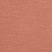 Coral Solid Decorator Fabric by Trend