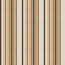 Praline Stripes Decorator Fabric by Fabricut