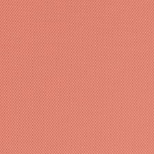 518773 DF16291 31 Coral by Robert Allen