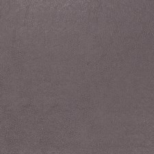 Parma Solid Decorator Fabric by Trend