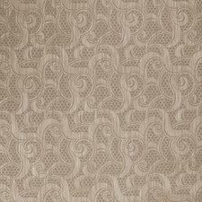 Through Grey Contemporary Decorator Fabric by Vervain
