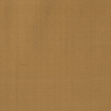 Brass Solid Decorator Fabric by Stroheim