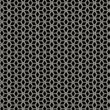 Black N White Contemporary Decorator Fabric by S. Harris