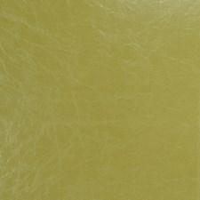 Kiwi Solid Decorator Fabric by Fabricut