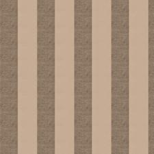 Plaza Stripes Decorator Fabric by Trend