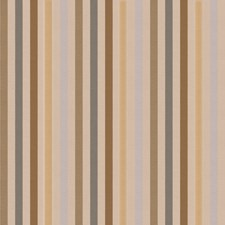 Slate Stripes Decorator Fabric by Trend