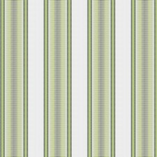 Grass Jacquard Pattern Decorator Fabric by Fabricut