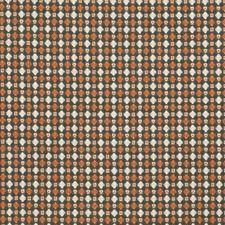 Squash Global Decorator Fabric by Stroheim