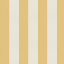 Honey Stripes Decorator Fabric by Trend