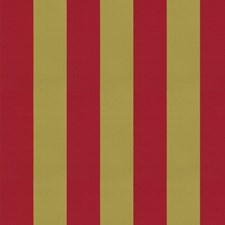 Jewel Stripes Decorator Fabric by Trend