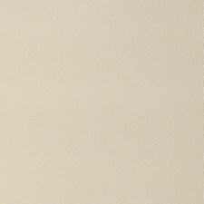Ivory Texture Plain Decorator Fabric by Fabricut