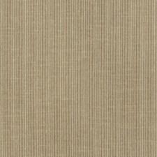 Sparrow Decorator Fabric by Schumacher