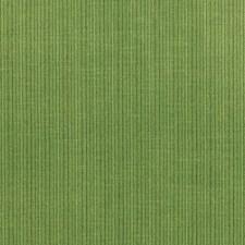 Verdant Decorator Fabric by Schumacher
