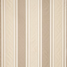 Amber Stripes Decorator Fabric by Trend