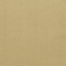 Seagrass Solid Decorator Fabric by Trend