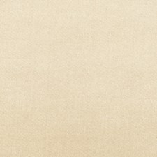 Oyster Solid Decorator Fabric by Trend