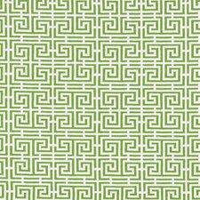 Green/White Decorator Fabric by Schumacher